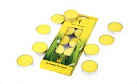 Fragrance World India Voitve Candle (Yellow, Pack Of 10)