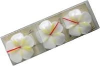 Aashram Fragrances And Lights Floating Aromatic-Vanilla Candle (White, Pack Of 3)