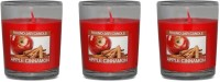 Fish Scented_Votive_Apple_Cinnamon Candle (Red, Pack Of 3)