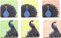 Eco Corner Peacock MDF Coaster Set - Pack Of 6