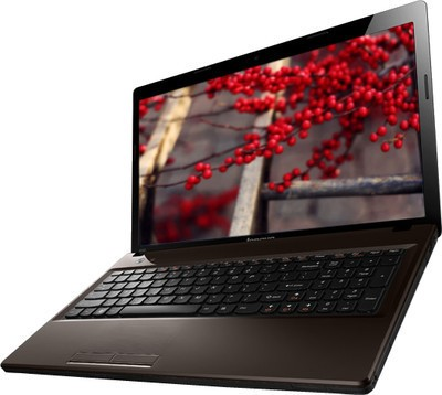 Buy Lenovo Essential G580 (59-348965) Laptop (3rd Gen Ci5/ 4GB/ 500GB/ DOS/ 1 GB Graph): Computer