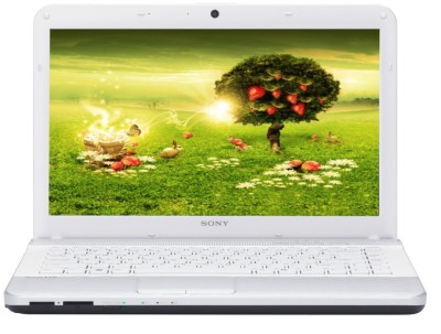 Buy Sony VAIO VPCEG3AEN Laptop (2nd Gen Ci5/ 4GB/ 320GB/ Win7 HB/ 512 MB Graph): Computer