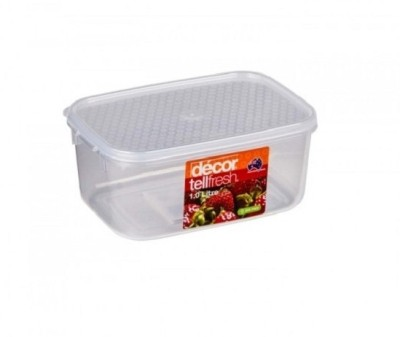 Decor tellfresh oblong 1 0 l best price in india on 16th for Decor 6l container