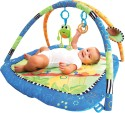 Bright Starts Hop Along Friends - 9012: Crib Toy Play Gym