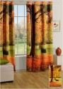 Swayam Digitally Printed Cosmo Fashion Window Curtain - CRNDUH4ACGHFWYBD