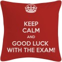 Amore Decor Keep Calm And Good Luck Cushions Cover - Pack Of 1