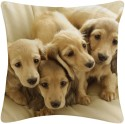 Amore Decor Puppies Cushions Cover - Pack Of 1