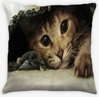 Amore Cat 4 Cushions Cover (Pack Of 1)