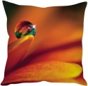 StyBuzz Dew Drop On Petal Cushions Cover - Pack Of 1