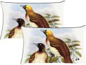 MeSleep Two Birds Pillows Cover - Pack Of 2