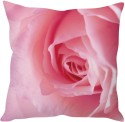 STYBUZZ Pink Rose Cushion Cushions Cover - CPCDWR74FCYXFXHY