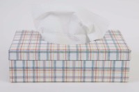The Wishing Chair 1 Compartments Card Board Primrose Hill Tissue Box (Checks) (multicolor)