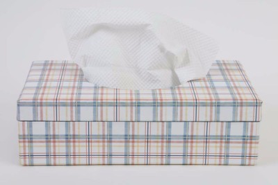 The Wishing Chair 1 Compartments Card Board Primrose Hill Tissue Box (Checks) (multicolor)