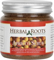 Herbal Roots Anti Blemish, Blackhead Remover And Skin Lightening Apricot Scrub For Face Treatment (100 G)