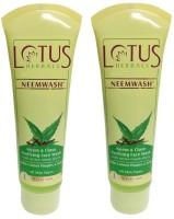 Lotus Herbals Neem & Clove - Purifying  Face Wash (240 G)