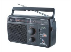 Pagaria Pluto 5 Band USB FM Radio