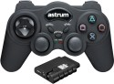 Astrum Dual Vibration Gamepad - Black, For PC, PS2, PS3