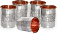 DakshCraft Stainless Steel Small Tumblers Inside Copper Glasses From India, Set Of 5 DS171 (239 Ml, Silver, Pack Of 5)