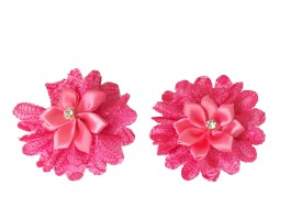 Modish Look Set Of Two Hair Clip