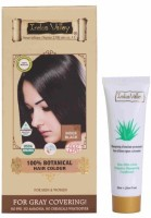 Indus Valley 100% Botanical Organic Healthier Indus Black With Free Shampoo Hair Color (Indus Black)
