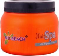 BIO REACH HAIR SPA (500 Ml)