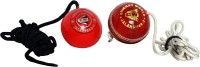 CW CW-704 Leather, Hard Plastic Hanging Ball For Cricket (Pack Of 2)