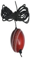 Apex Club Leather Hanging Ball For Cricket (Pack Of 1)