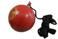 Flash 446 Hard Plastic Hanging Ball For Cricket (Pack Of 1)