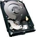 Samsung Spinpoint F3 500 GB Desktop Internal Hard Drive (ST500DL001): Internal Hard Drive