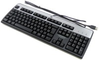 Hp KU 0316 Wired USB Standard Keyboard (Silver, Black)
