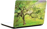Pics And You Green And Gorgeous 3M/Avery Vinyl Laptop Decal (Laptops And MacBooks)
