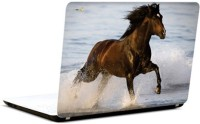 Pics And You Horse In Water Vinyl Laptop Decal (Laptops And Macbooks)