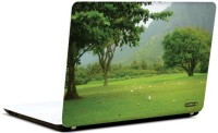 Pics And You Green Glory 3 3M/Avery Vinyl Laptop Decal (Laptops And MacBooks)
