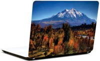 Pics And You Nature At Its Best 7 3M/Avery Vinyl Laptop Decal (Laptops And MacBooks)