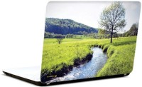 Pics And You Green And Gorgeous 18 3M/Avery Vinyl Laptop Decal (Laptops And MacBooks)
