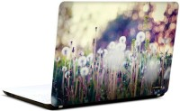Pics And You Amazing Nature 2 3M/Avery Vinyl Laptop Decal (Laptops And MacBooks)