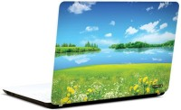 Pics And You Green And Gorgeous 5 3M/Avery Vinyl Laptop Decal (Laptops And MacBooks)