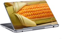 AV Styles Maize And Corn Skin Vinyl Laptop Decal (All Laptops)