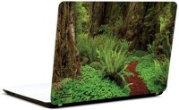 Pics And You Amazing Forest 9 3M/Avery Vinyl Laptop Decal (Laptops And MacBooks)