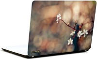 Pics And You Amazing Nature 4 3M/Avery Vinyl Laptop Decal (Laptops And MacBooks)
