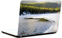 Pics And You Hues Of Nature 12 3M/Avery Vinyl Laptop Decal (Laptops And MacBooks)