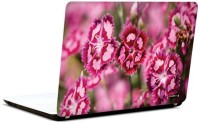 Pics And You Bloom And Blossom 3 3M/Avery Vinyl Laptop Decal (Laptops And MacBooks)