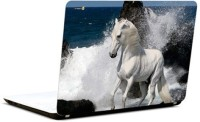 Pics And You Horse In Splash Vinyl Laptop Decal (Laptops And Macbooks)