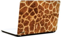 Pics And You Leopard Love 3M/Avery Vinyl Laptop Decal (Laptops And MacBooks)