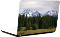 Pics And You Nature Themed 596 3M/Avery Vinyl Laptop Decal (Laptops And MacBooks)