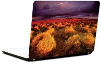 Pics And You Shades Of Nature 13 3M/Avery Vinyl Laptop Decal (Laptops And MacBooks)