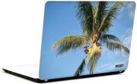 Pics And You Nature Themed 420 3M/Avery Vinyl Laptop Decal (Laptops And MacBooks)