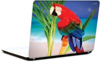 Pics And You Macaw On Beach Vinyl Laptop Decal (Laptops And Macbooks)