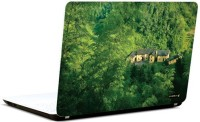 Pics And You Green And Gorgeous 9 3M/Avery Vinyl Laptop Decal (Laptops And MacBooks)