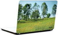 Pics And You Green And Gorgeous 20 3M/Avery Vinyl Laptop Decal (Laptops And MacBooks)